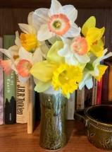 daffodills Apr2020